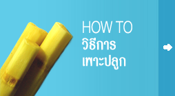 banner_howto